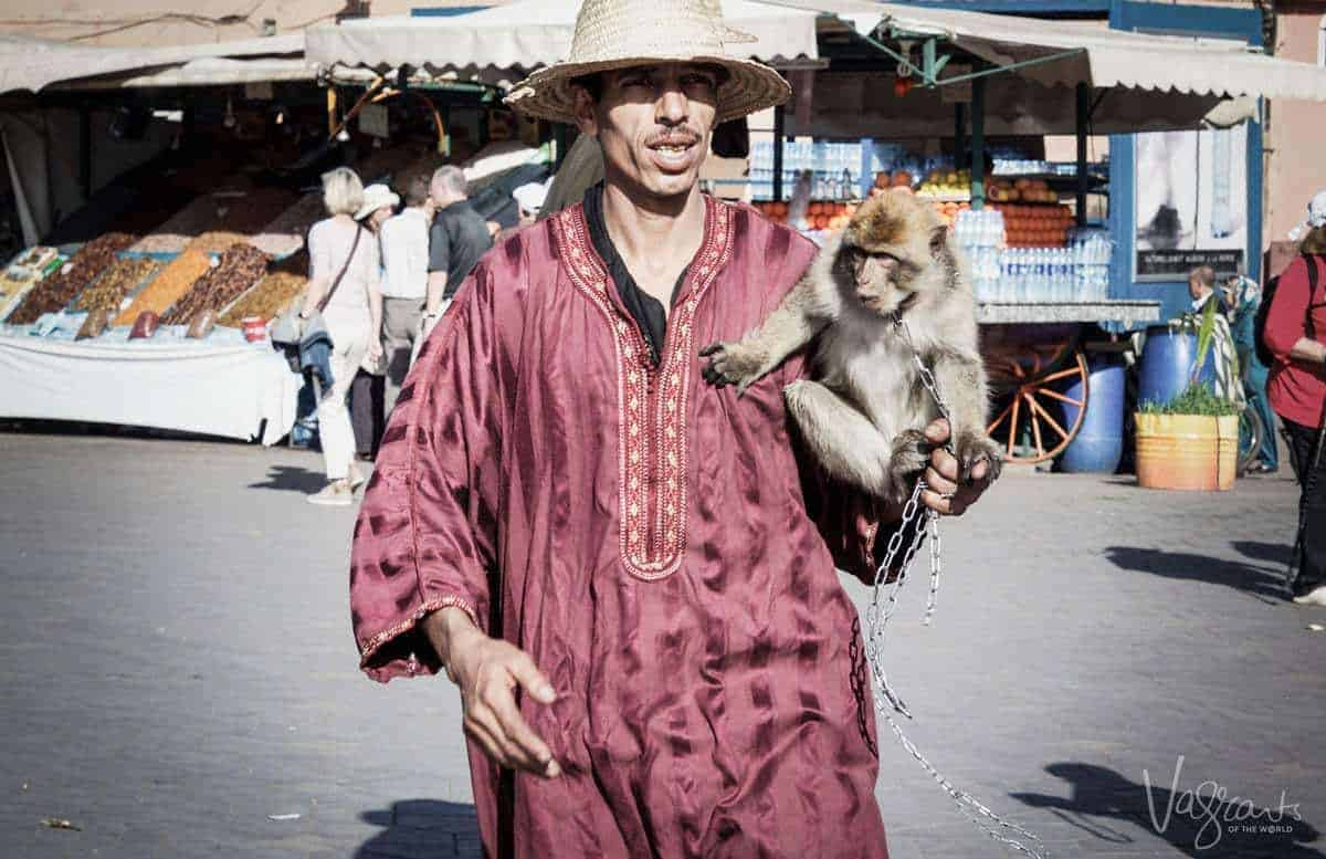 Man with monkey in Jemaa el-Fnaa Marrakech Morocco. Is Morrocco safe. Beware of pickpockets in Marrakesh Beware of scammers in Marrakesh.