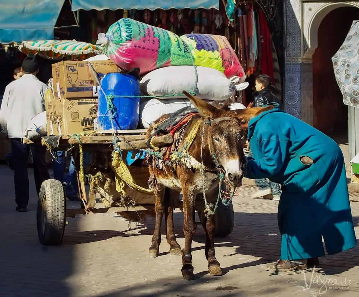 Donkey and overloaded cart in Marrakech Souk Morocco. Best free things to see and do in Marrakech Morocco