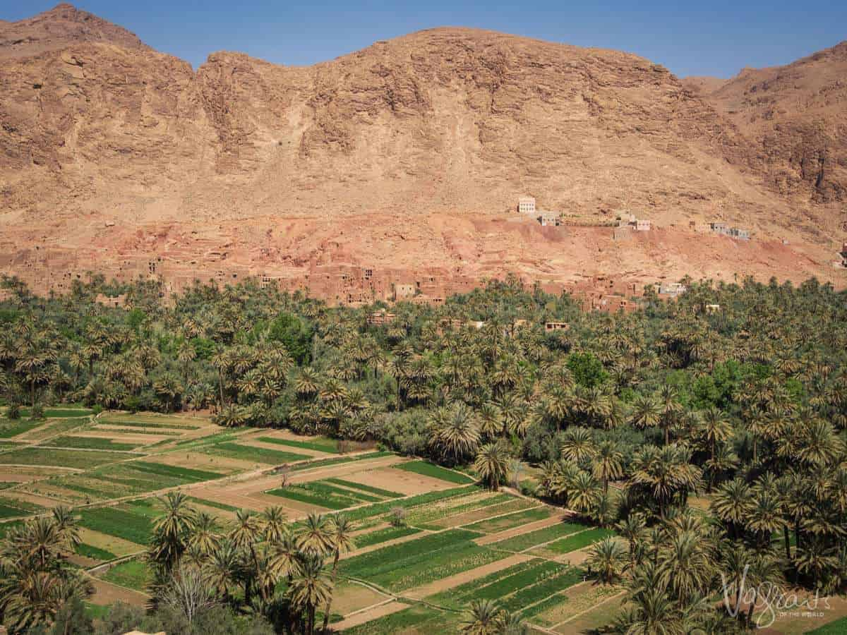 Mountains and green fields in Ouarzazate Morocco. You will enjoy this scenery on your moroccan road trip.
