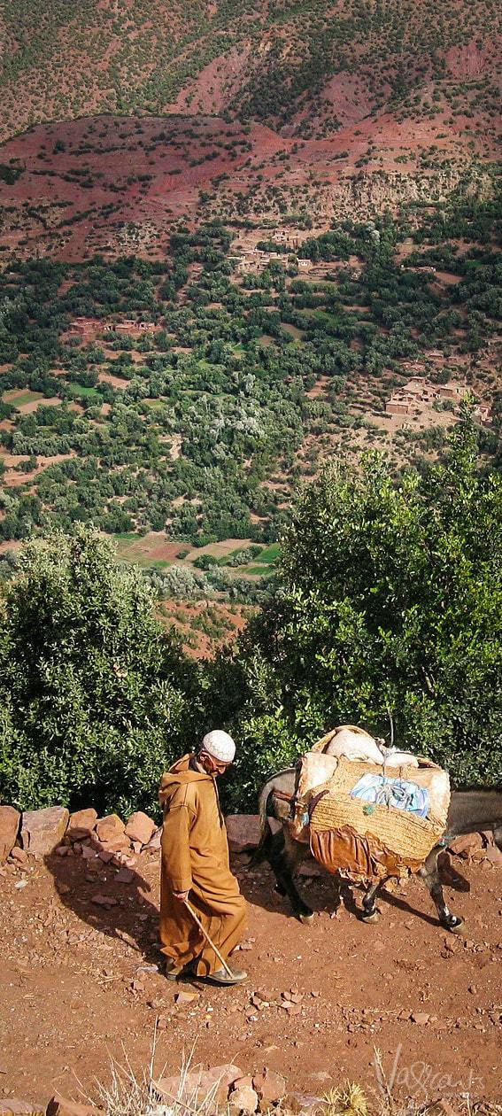 Road trip from Marrakech to Fez via the Atlas Mountains and Sahara - The best way to see Morocco
