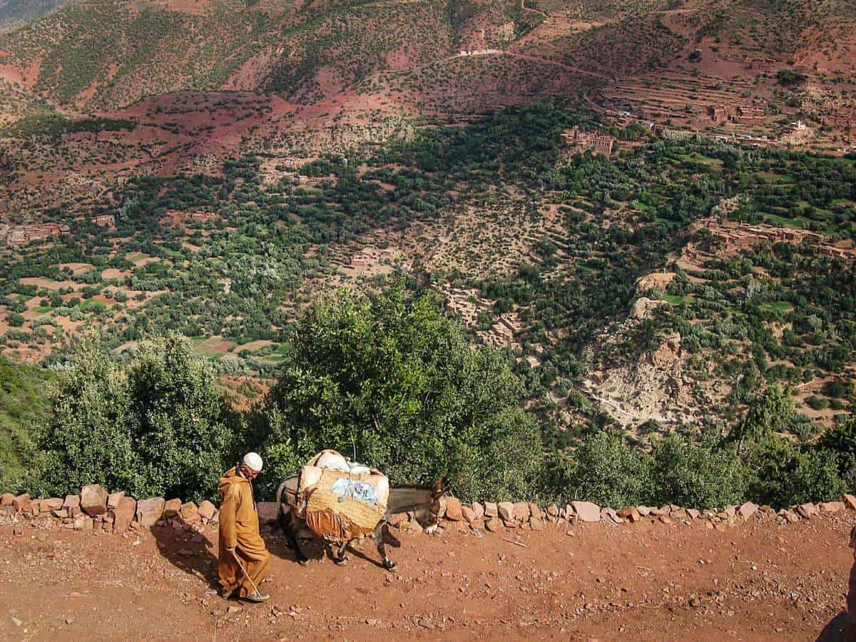 moroccan road trip, Marrakech to Fez - Man with donkey in the Atlas Mountains Morocco