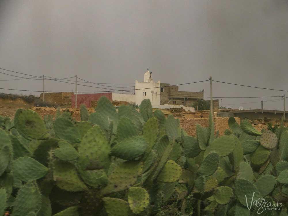 Train from Casablanca to Marrakech Morocco