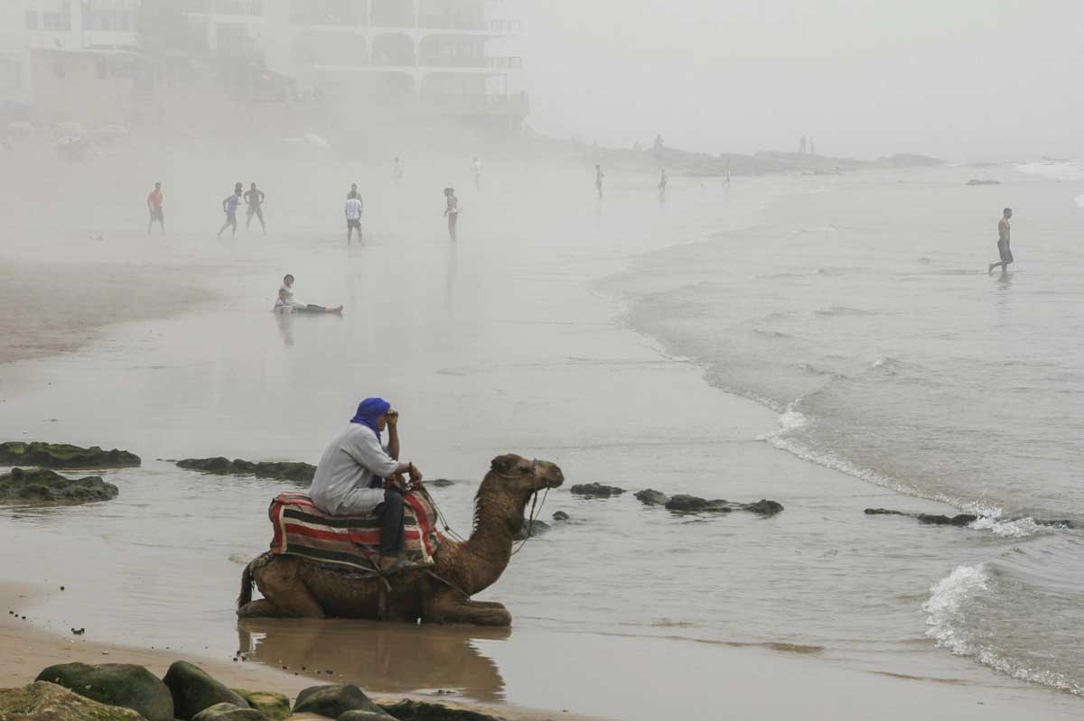 Camel rides on the beach in Tangier Morocco