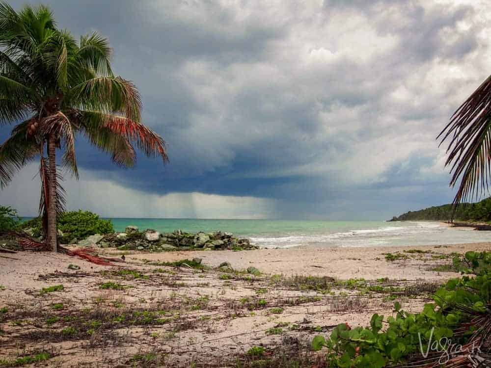 Vieques Island Beach photo