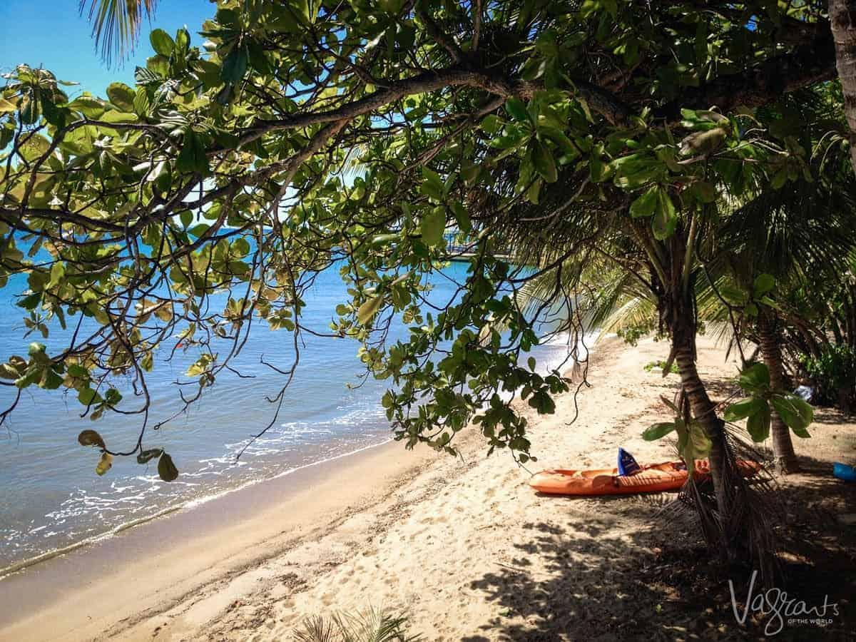 Vieques Island Beach photo