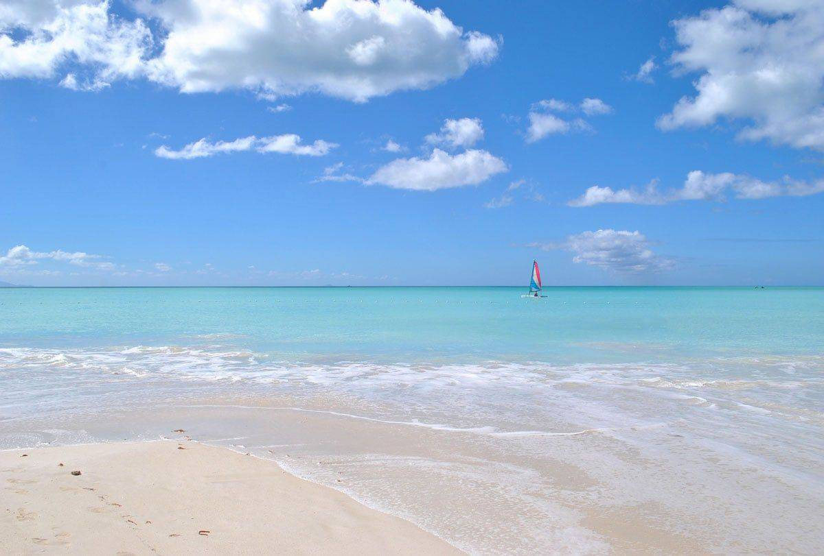 A guide to Vieques Island