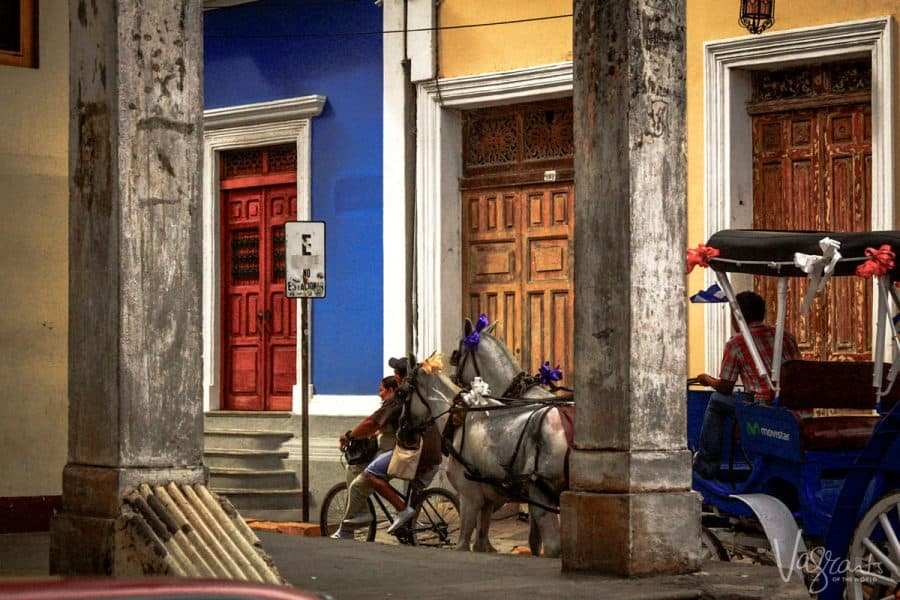 Things to do in Granada Nicaragua - Take a ride on a horse drawn cart