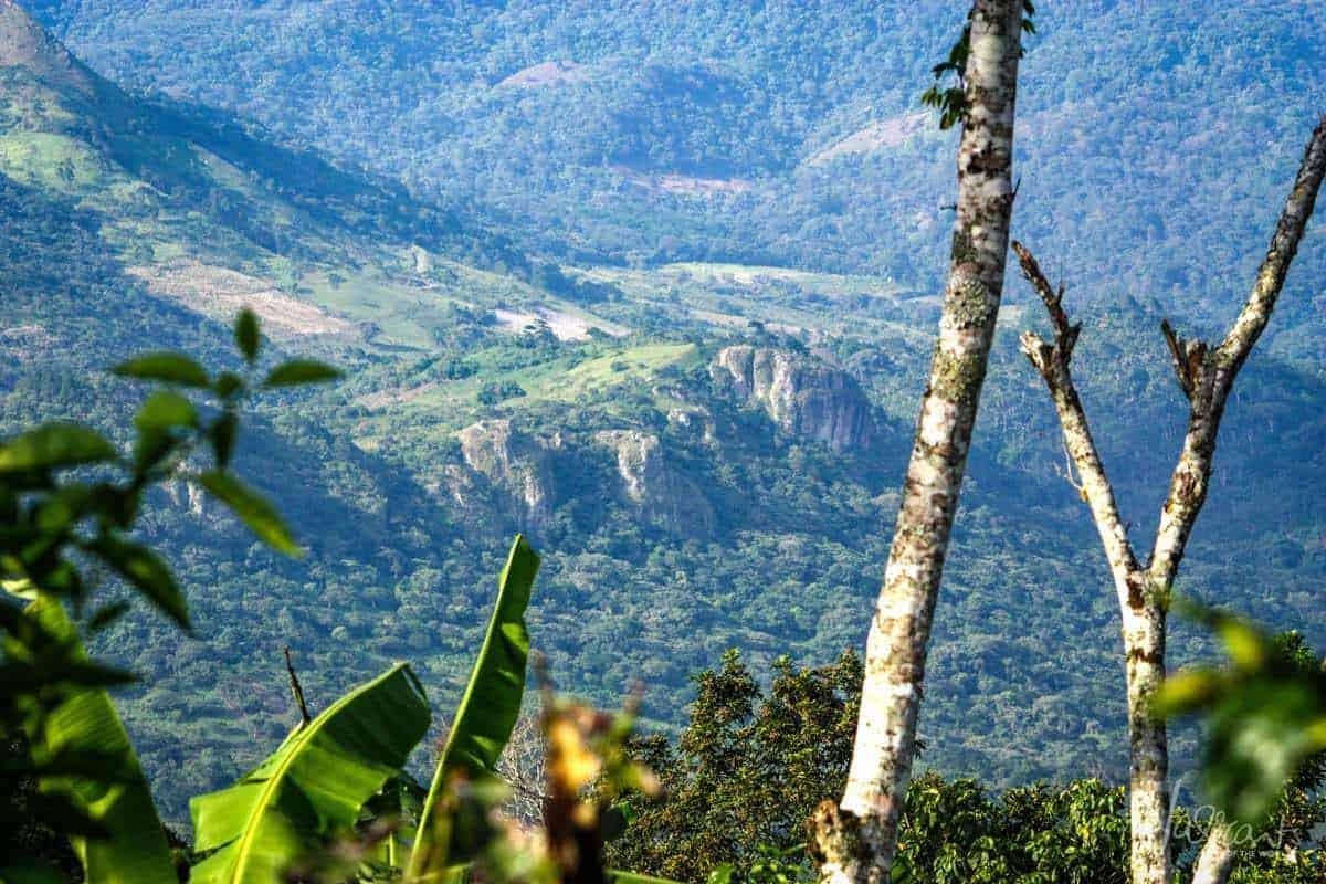Matagalpa Nicaragua's Coffe Country
