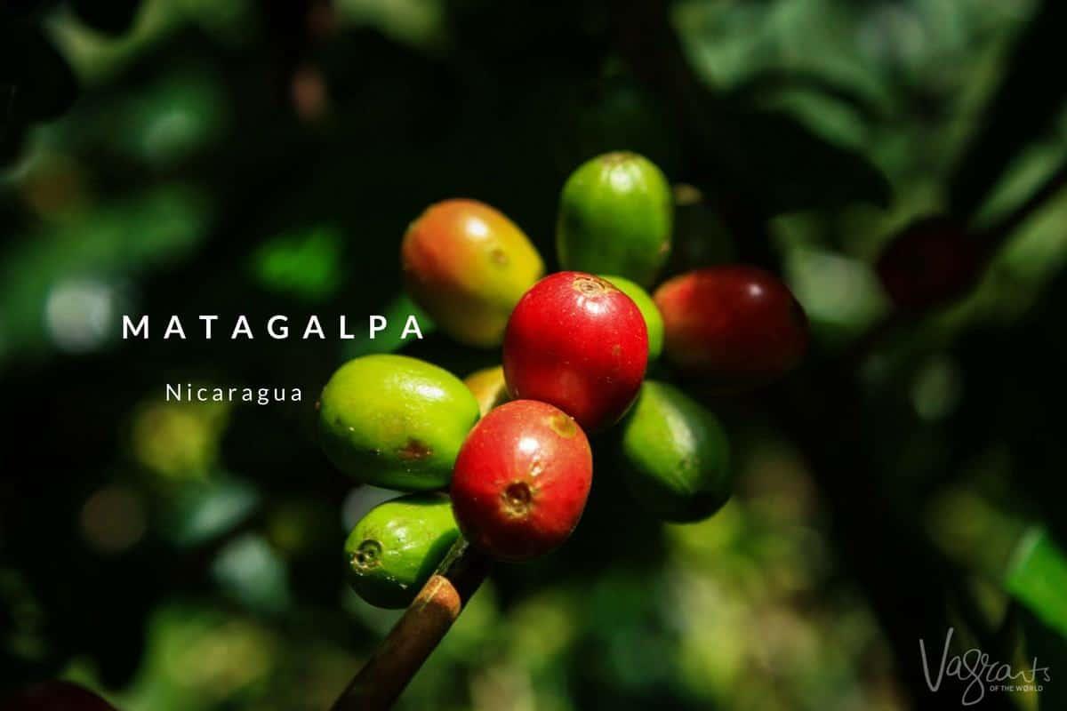 What to do in Matagalpa Nicaragua