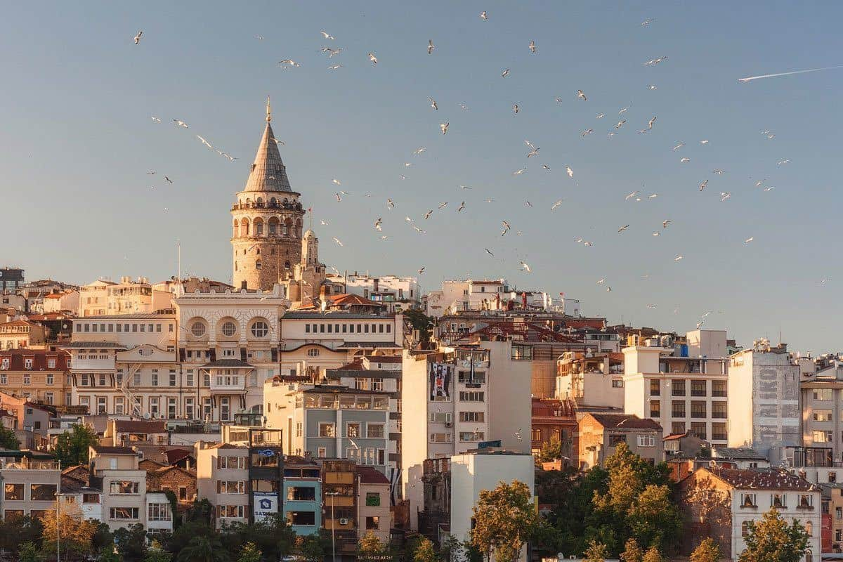 a large flock of birds flying around galata tower. some of the best restaurants in istanbul are located in this area.