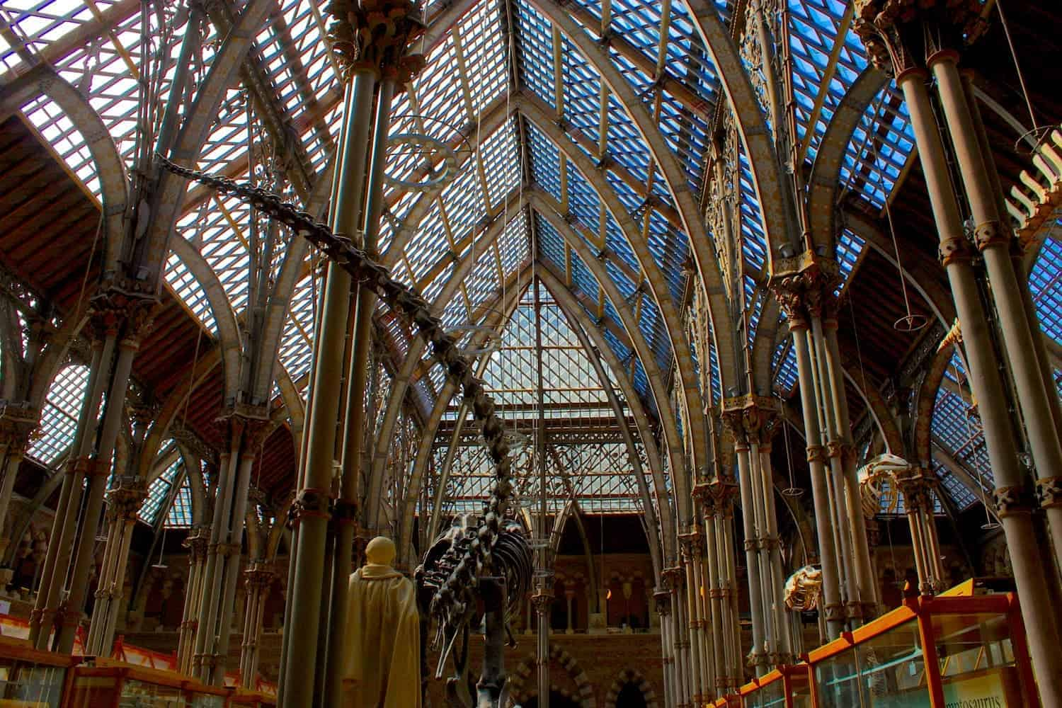 Museum Of Natural History Oxford
