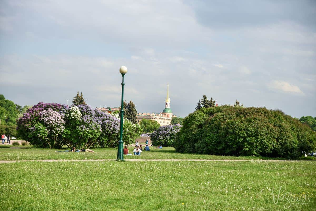 People sitting in a park amongst the wildflowers. This is a free thing to do in St Petersburg.