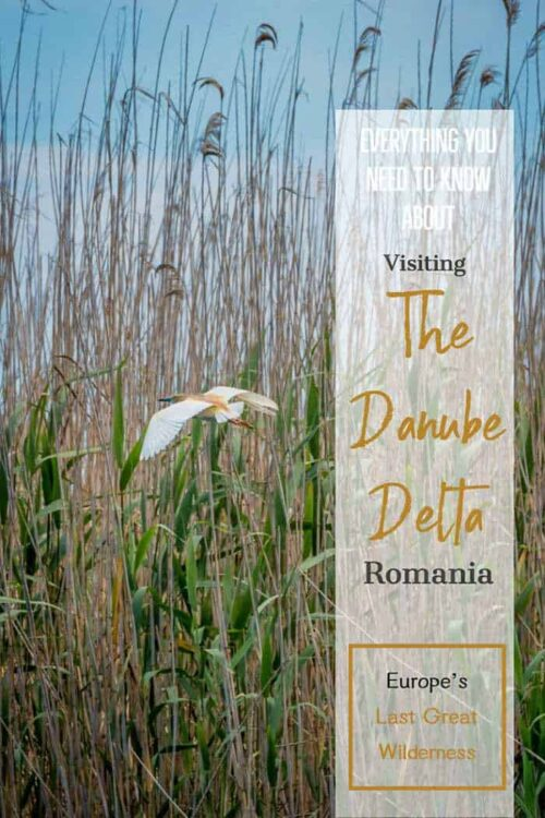Visiting the Danube Delta Romania | Guide to the Danube Delta | #romania #danube #danubedelta
