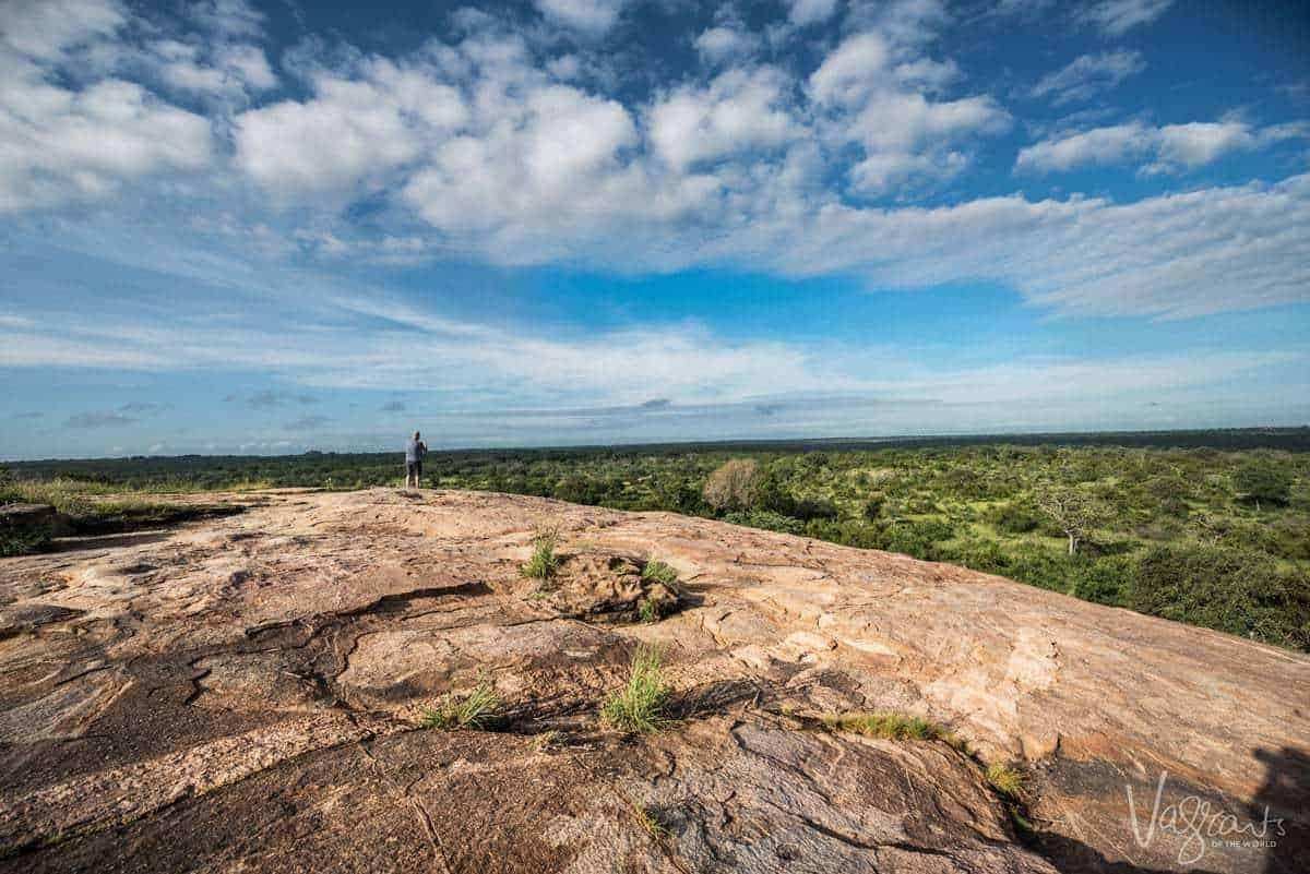 Private Safari Kruger National Park