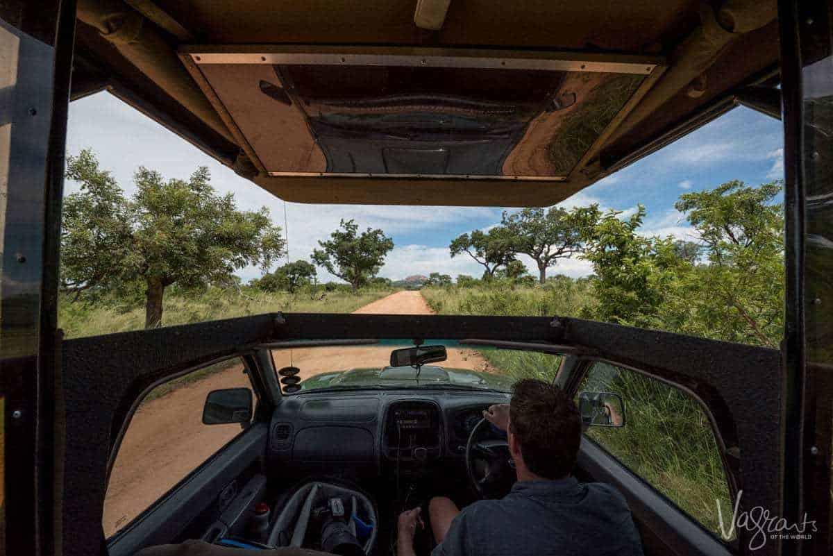 Private Kruger Safari - Kruger National Park