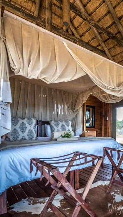 Imagine a complete luxury African safari experience without the high price tag.