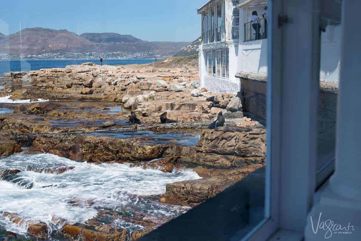 Places to visit near Cape Town - Kalk Bay