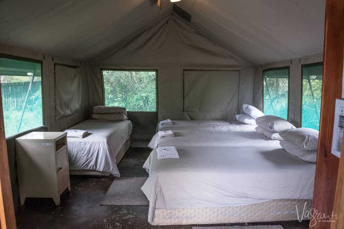 Kruger Park Accommodation - Safari Tent