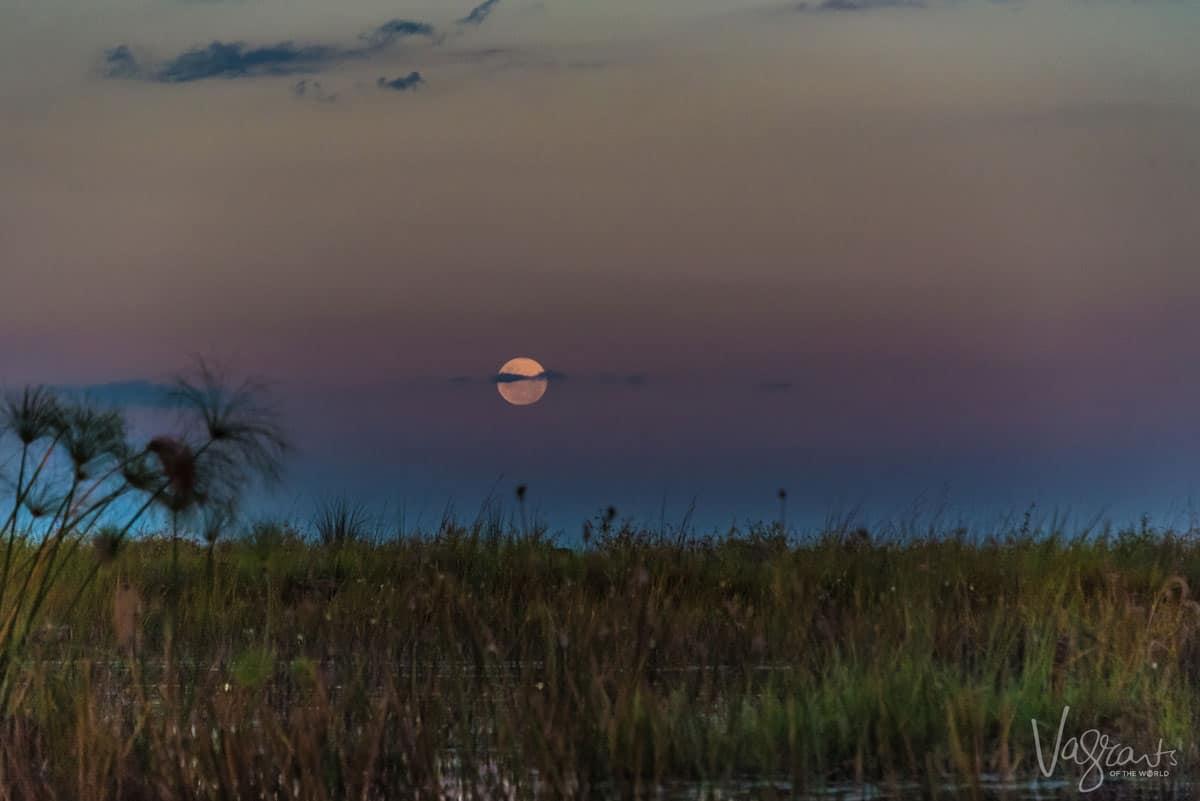 Okavango Delta Safari - Moon Rise