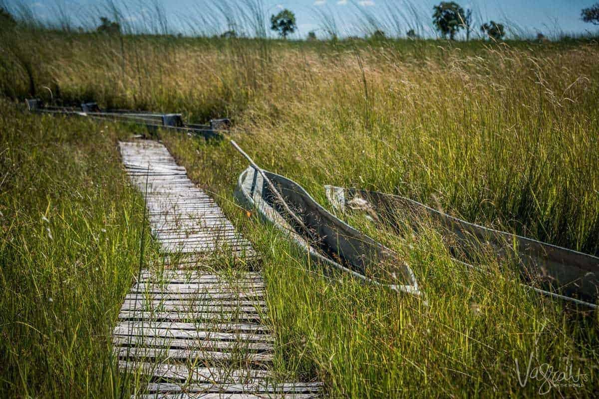 Okavango Delta Tours - Mokoro Tours