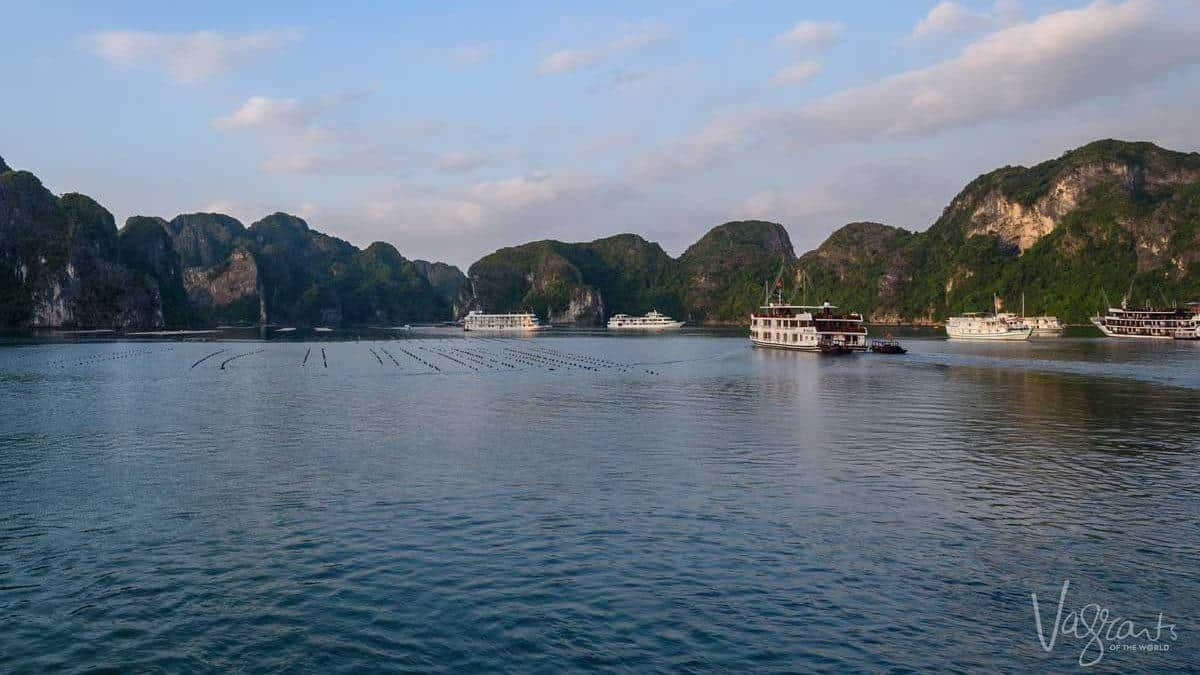 Halong Bay Pearl farm