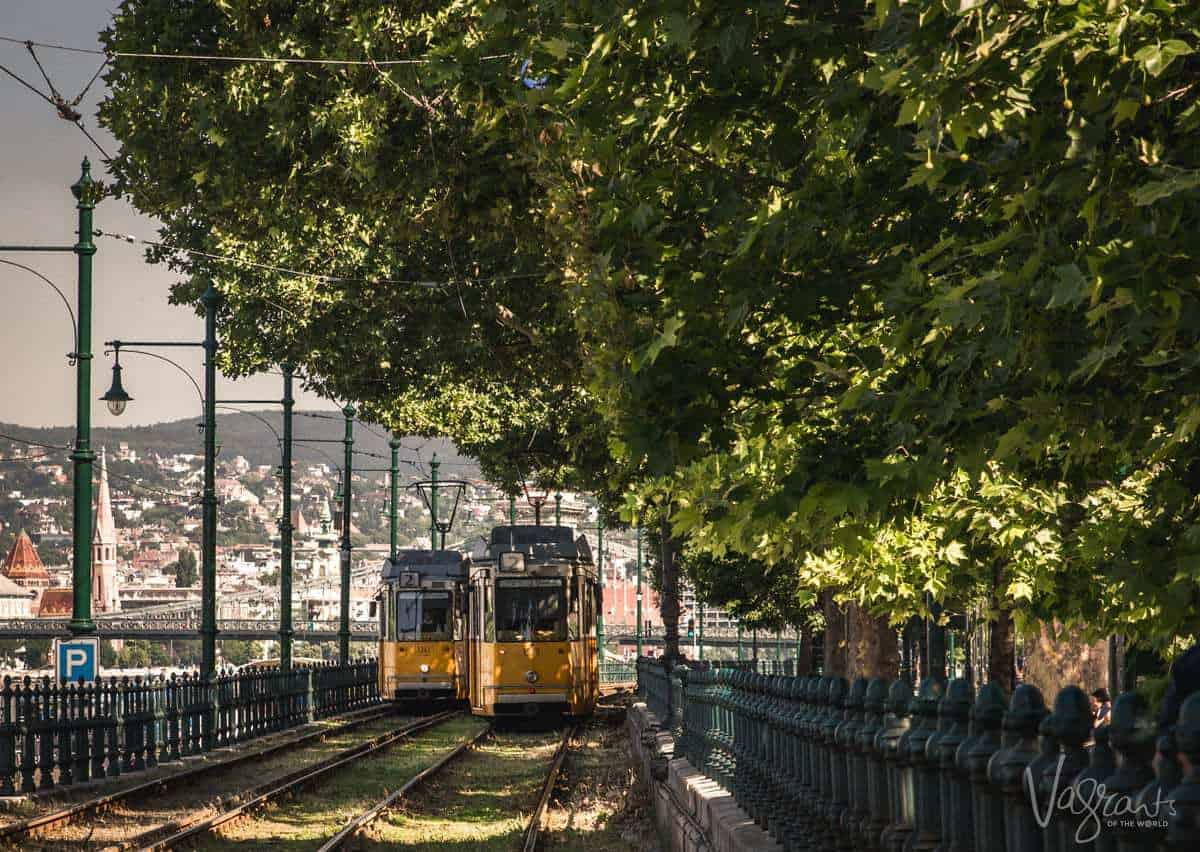 Iconic yellow trams of Budapest