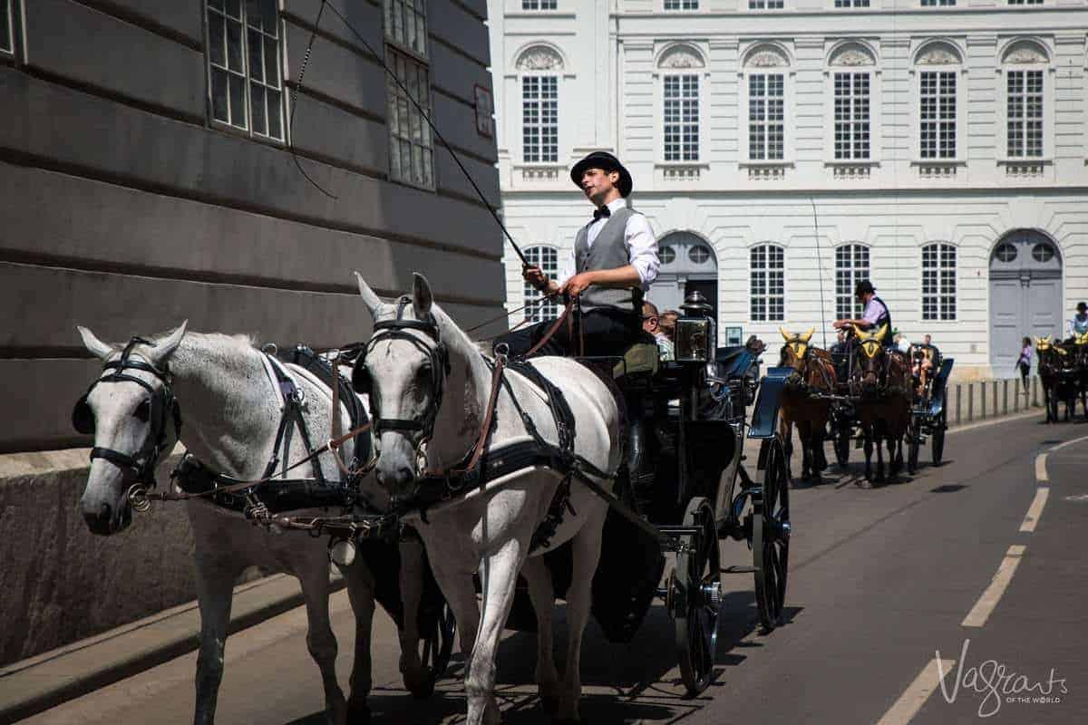 Fiaker Taxi in Vienna Austria