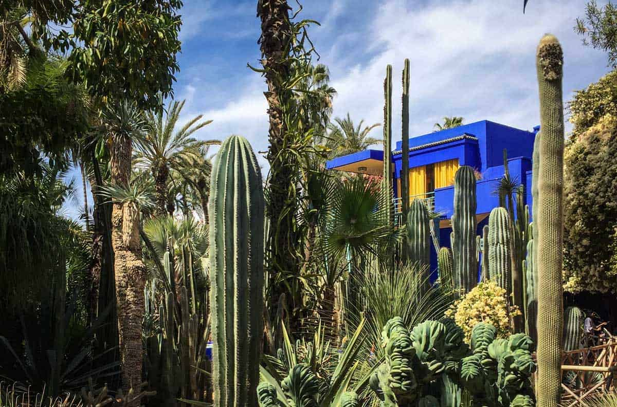 The famous cobolt blue villa and cactus gardens in the Jardin Majorelle Yves Saint Laurent Gardens and Museum in Marrakech