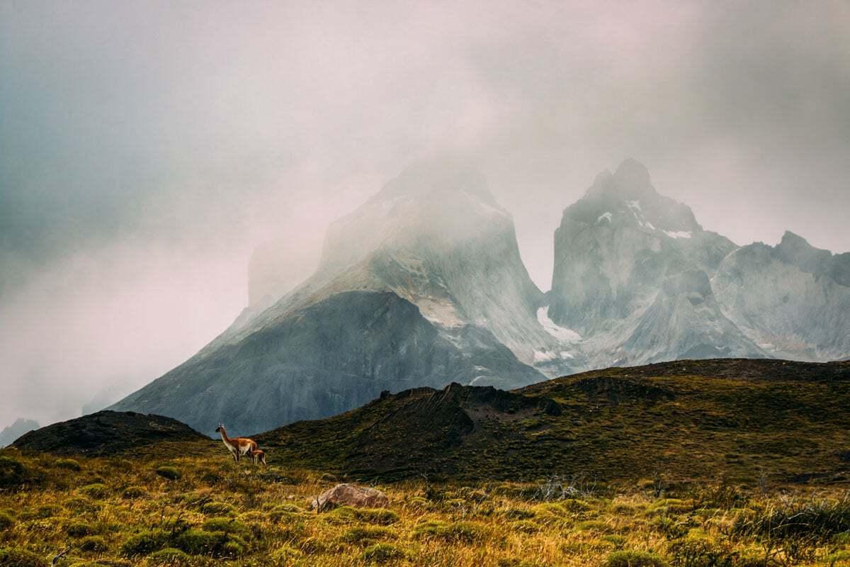 Reasons to visit Patagonia