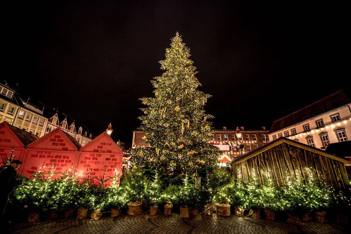 Giant Christmas Tree and markets in Germany.