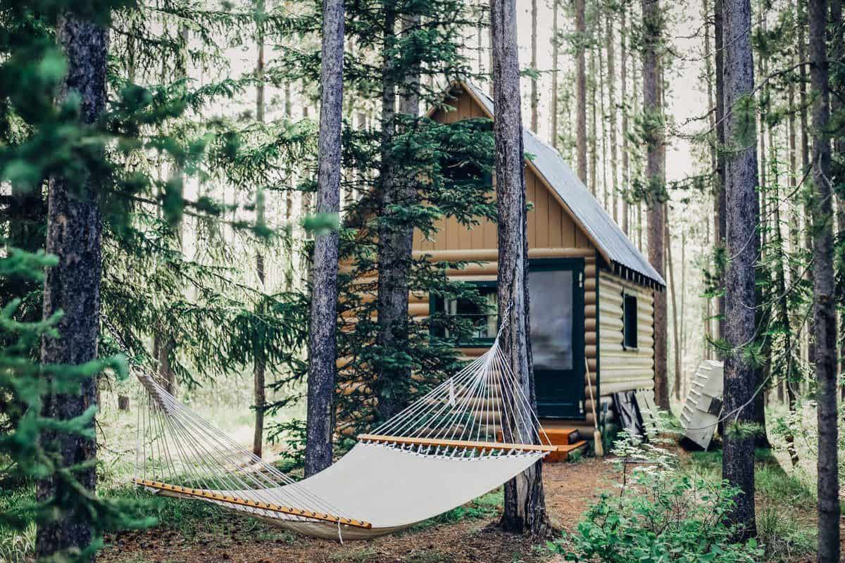 Hammock in front of log cabin in forest. hanging out here is one of the best things to do in the usa this summer