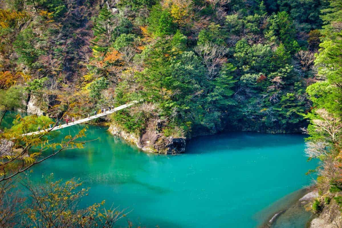 Trekkers crossing a river via suspension bridge surrounded by an autumn forest.