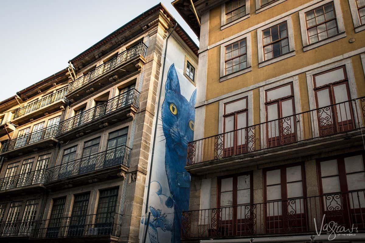 Blue cat with yellow eyes three story mural - Ruas das Flores.