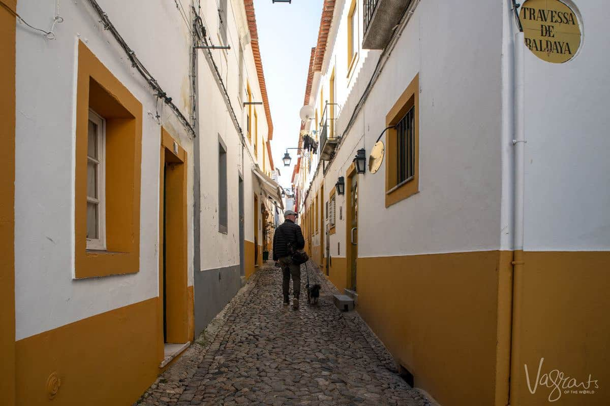 man and his very handsome dog walking down a cobble stone street following his alentejo guide and looking for some black pork as alentejo food is outstanding.