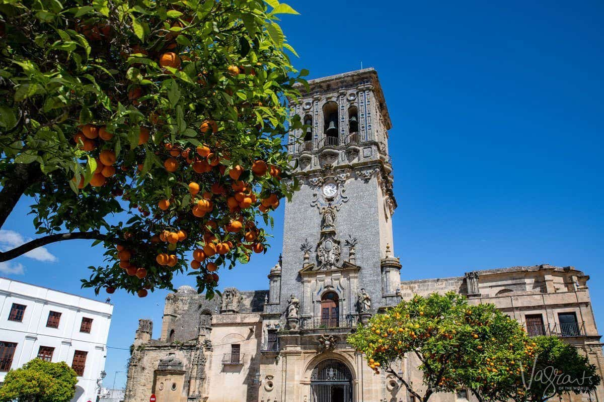 orange tree in front of old church in Arcos de la Frontera, one of the best white villages in spain
