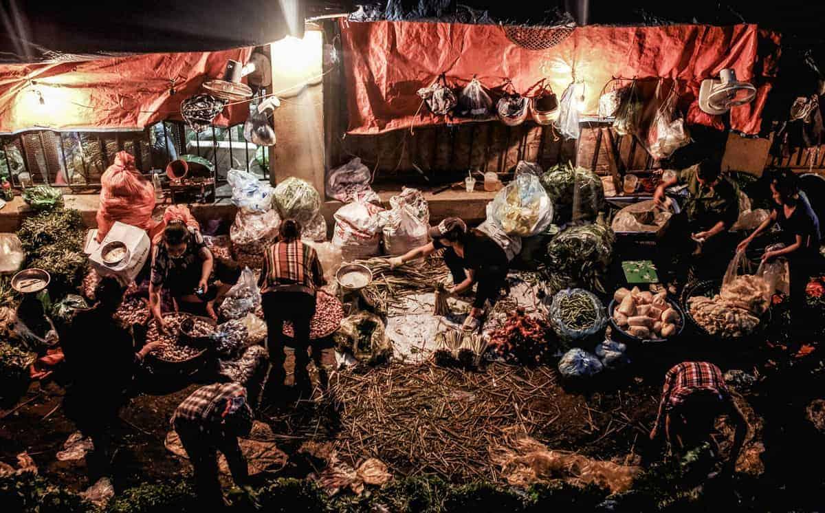 Women organising fruit and vegetables for the best market in Hanoi, the Long Bien morning market.
