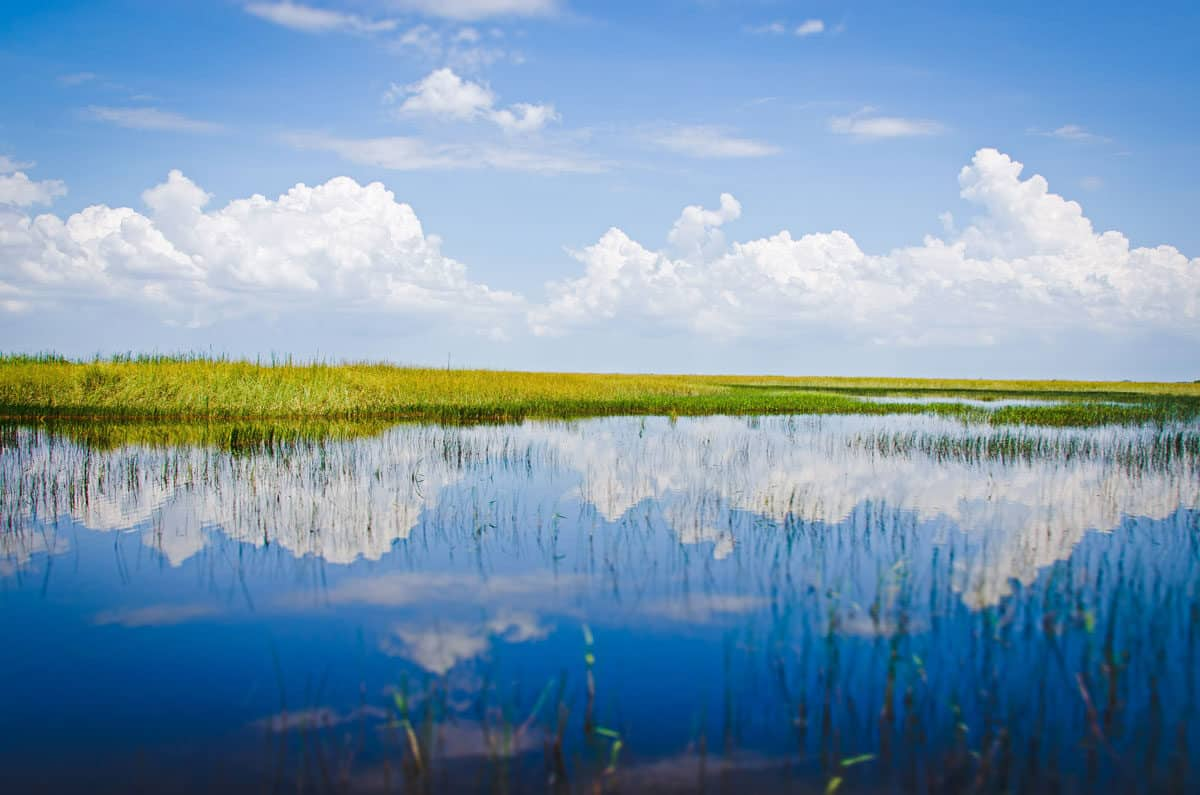 Sky mirrored in the water in the Everglades wetlands in Florida.
