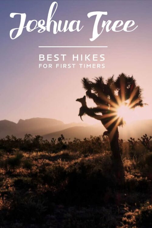 Looking for the best hikes in Joshua Tree National Park? Here are some of the best hikes for first time visitors as well as loads of tips on visiting Joshua Tree. #joshuatree #hiking #california #joshuatreeNP