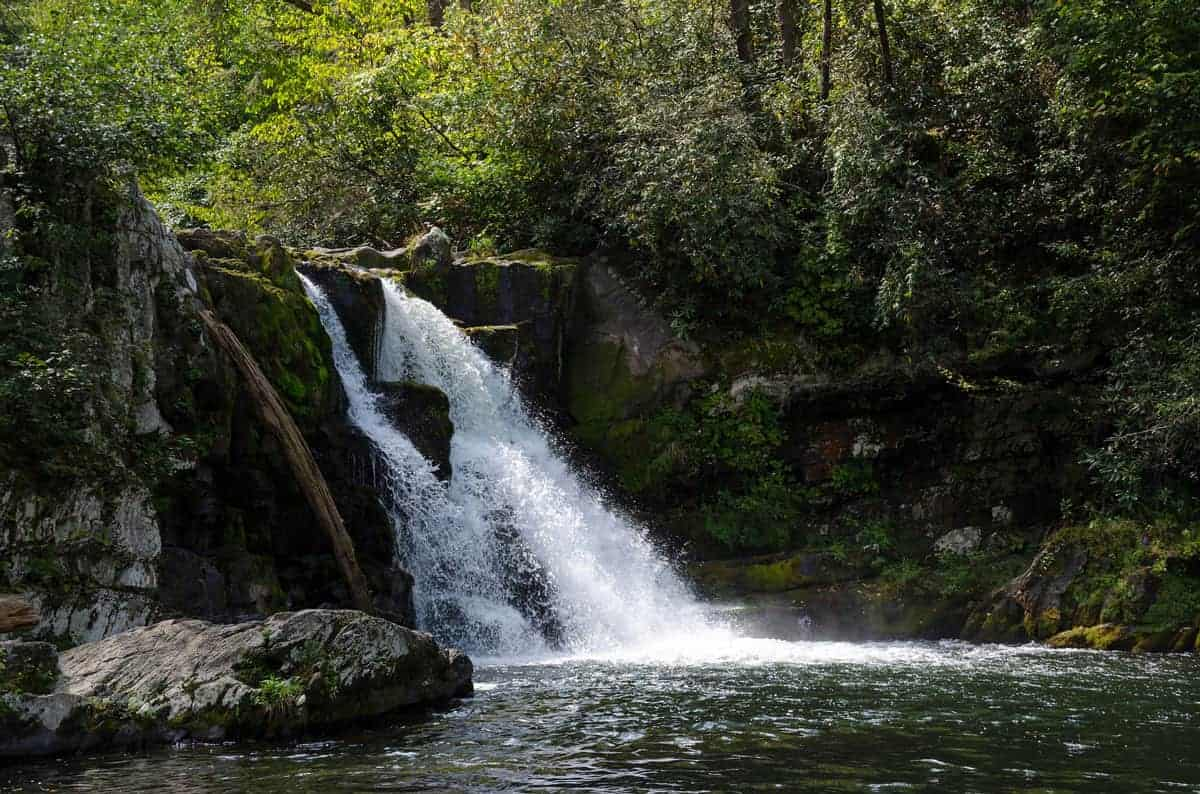 5 Hikes Near Nashville For Outdoor Enthusiasts