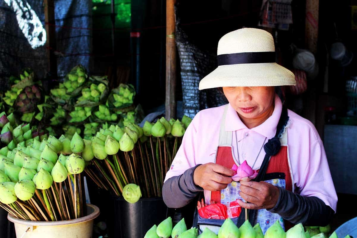 Thai Lady preparing lotus flowers at a market in Chiang Mai