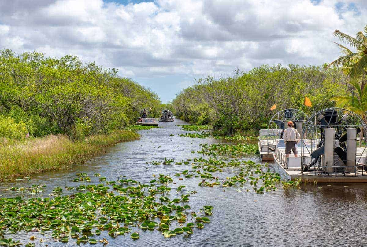 A popular day trip from Fort Lauderdale is river boating in the Everglades National Park.