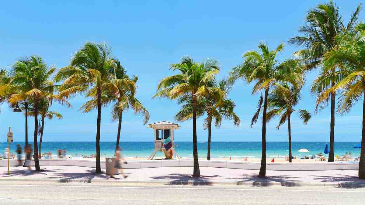 Palm fringed beach, white sand, clear blue water in Las Olas Fort Lauderdale.