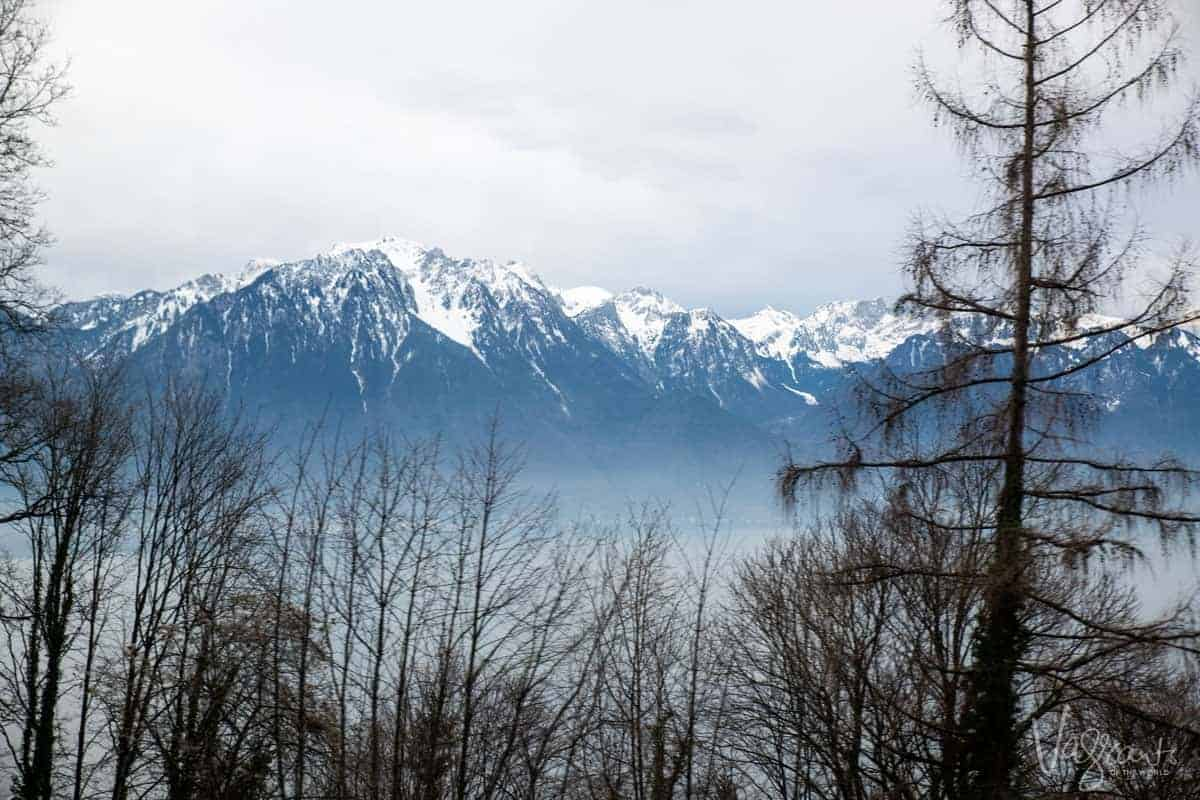 Looking through bare trees over a misty lake with the Swiss Alps in the background.