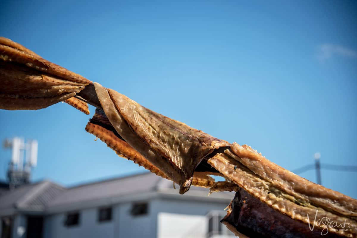 Fish drying in the sun. Cape Bokkoms is a popular snack in Paternoster South Africa
