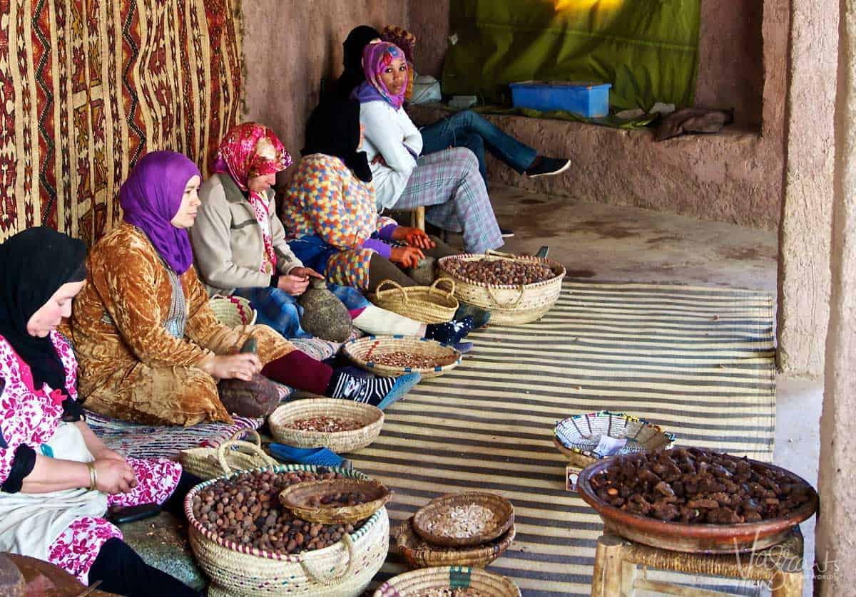 Moroccan ladies in traditional Berber village sorting Argan nuts to make Argan oil.