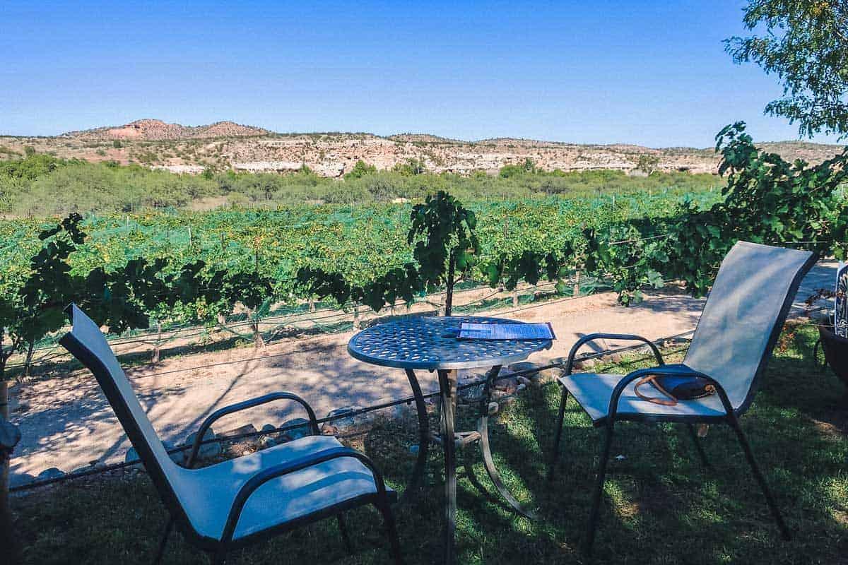 Looking over the vineyards in Sedona