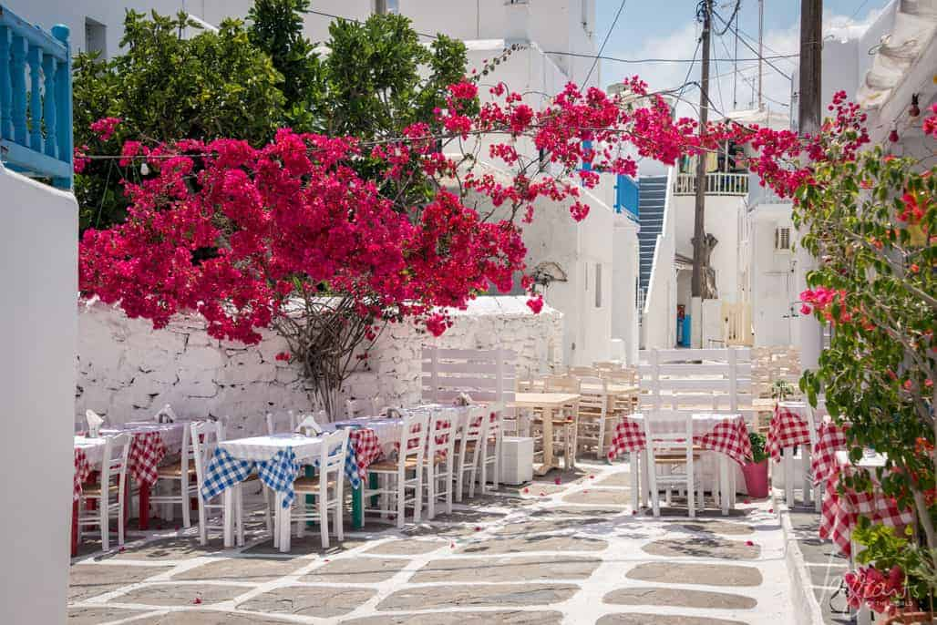 Red flowered vines hanging over typical greek restaurant white tables and checkered cloths.