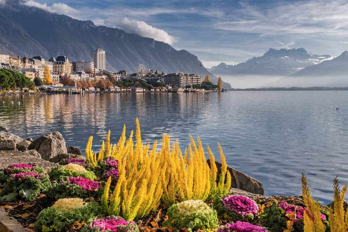 Bright yellow, pink and green flowers along the edge of lake Geneva Montreux
