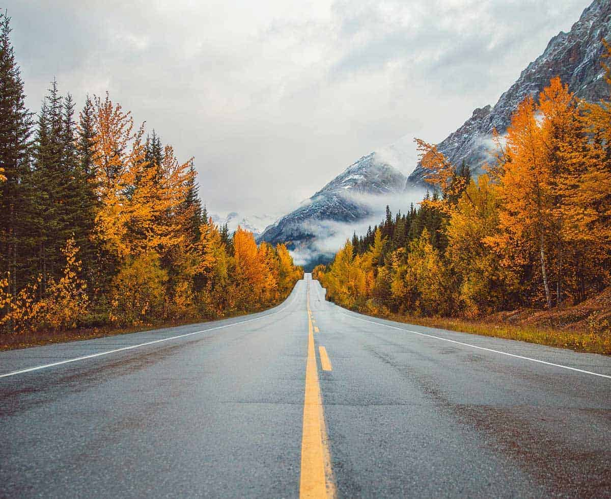 Cruising down a Canadian highway lined with golden trees and misty mountains.
