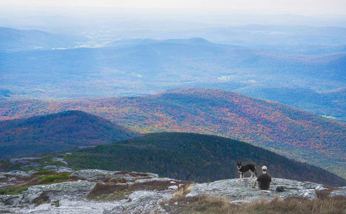 Man and dog taking in the fall view in Vermont